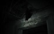 GhostAppear444