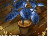 Hierba azul