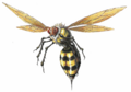RE Wasp