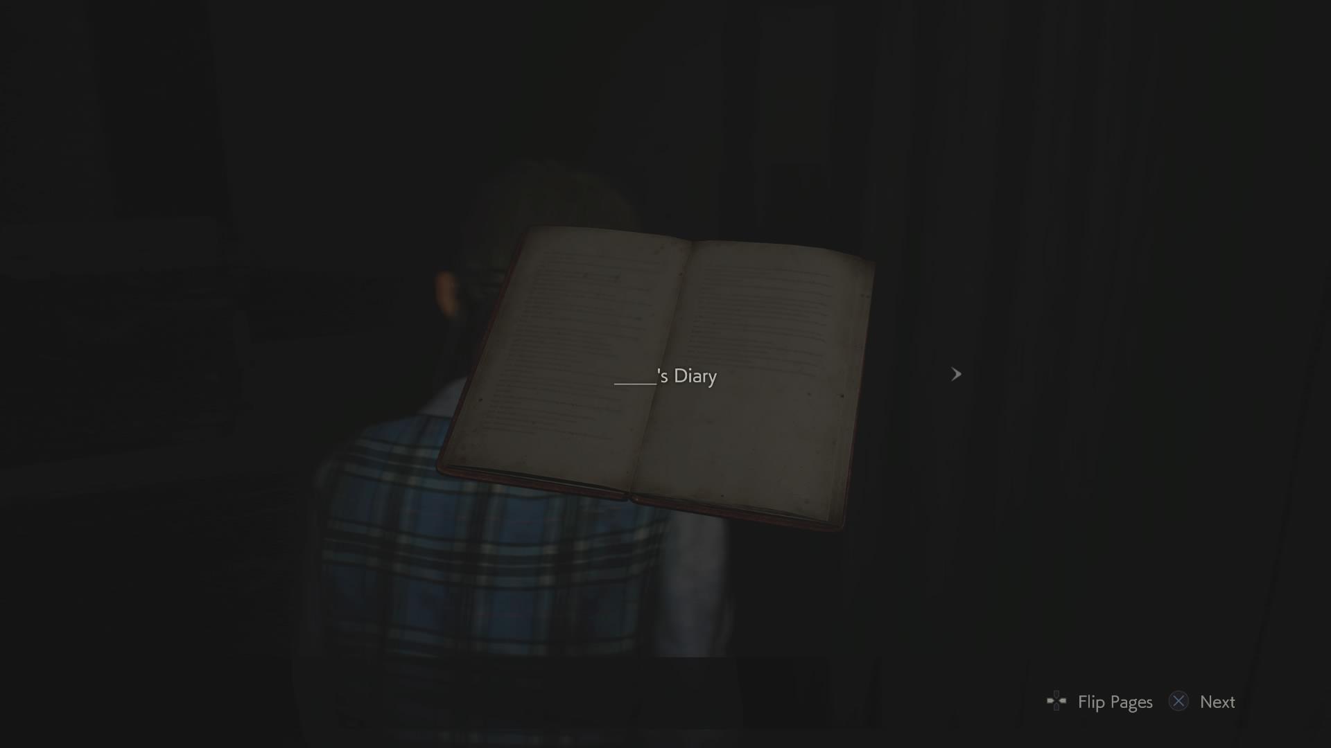 's Diary