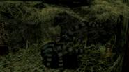 PS1 Black Tiger (2)
