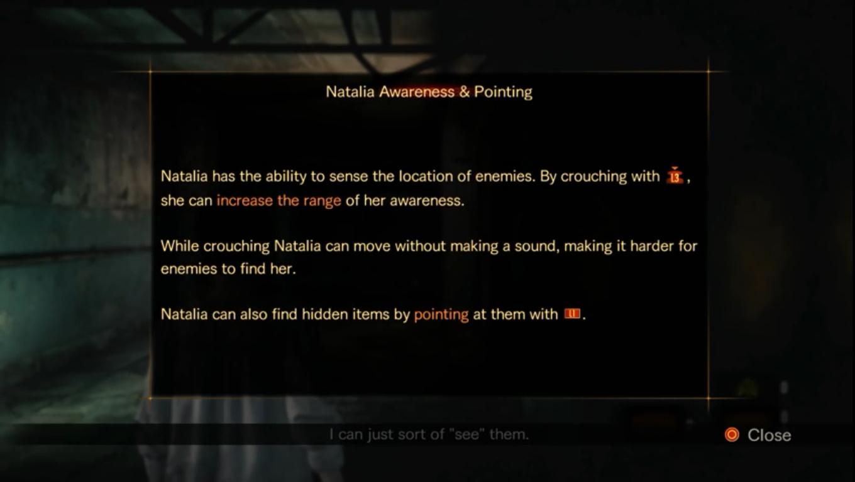 Natalia Awareness & Pointing