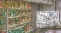 Mansion Artwork - True Story Behind Biohazard 22