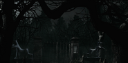 Cemetery Path 12