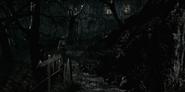 Cemetery Path 8