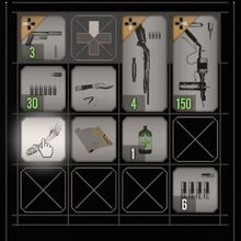 RESIDENT EVIL 7 biohazard D-Series Arm inventory.jpg
