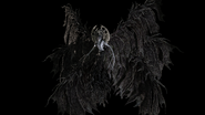 Miranda - Flying Form