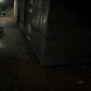 Dulvey Haunted House Corridor.png