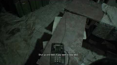 Zoe's call 2