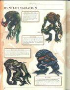Hunter variations
