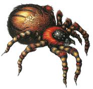 RE Web Spinner artwork