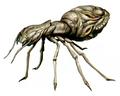 RECV Ant artwork