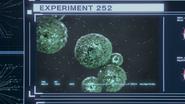 A-Virus Experiment 252