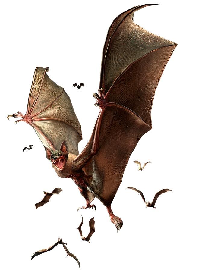 Murciélago infectado