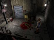 RE3 Dumpster Alley 11