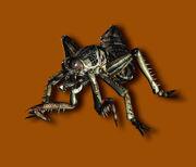Plague Crawler CG art.jpg