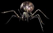 RETDC Black Widow