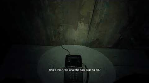 Zoe's call 1