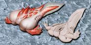 Albinoid concept