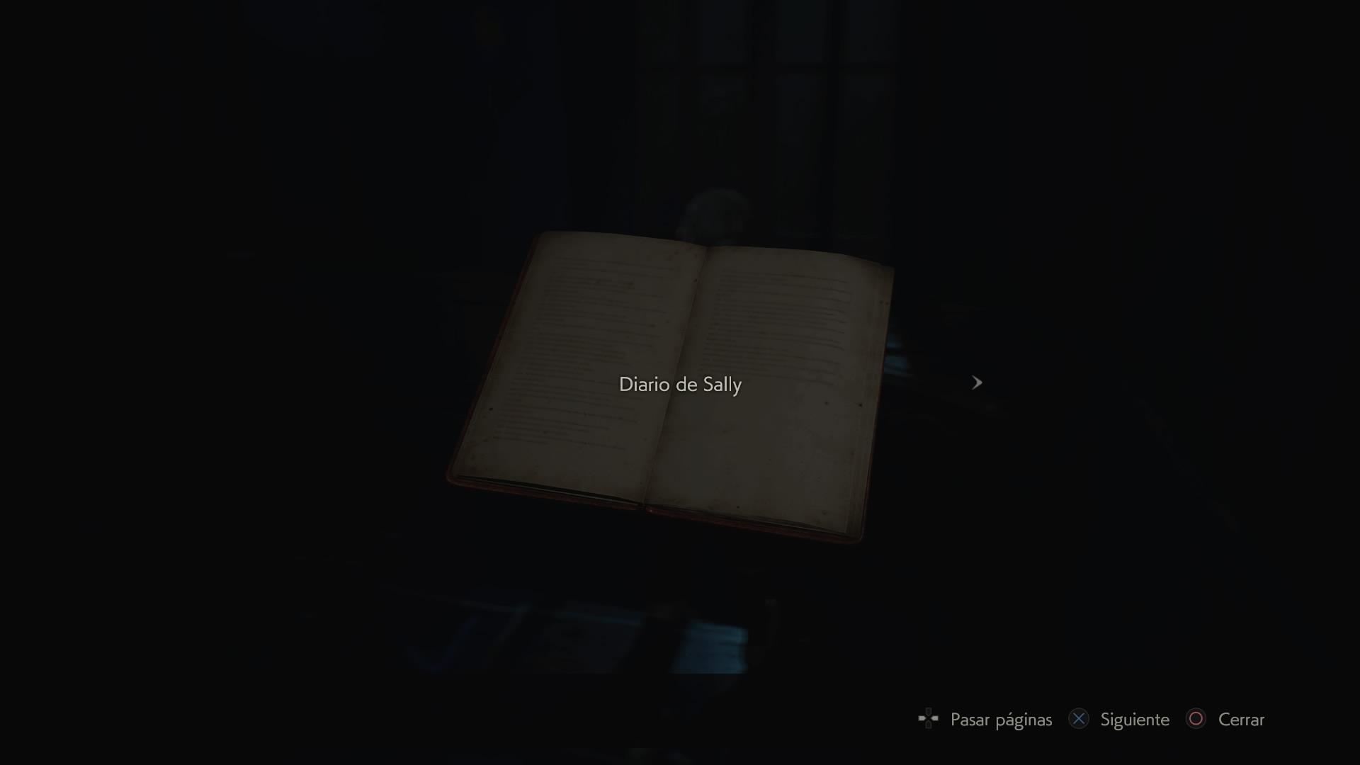 Diario de Sally