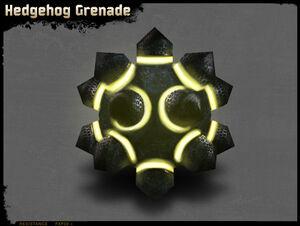 Igelgranate.jpg