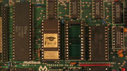 MPF1Closeup