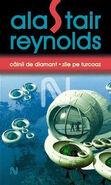 Diamond Dogs, Turquoise Days (Romanian edition by Nemira)