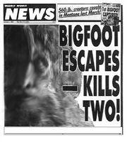 Ray robillard bigfoot.jpg