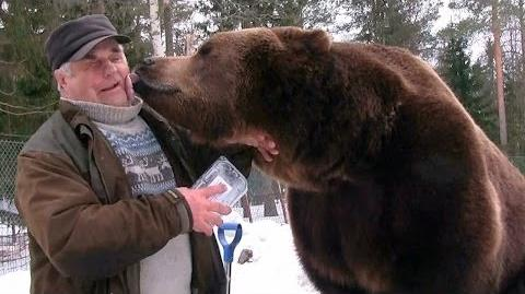 Bear-Whispering