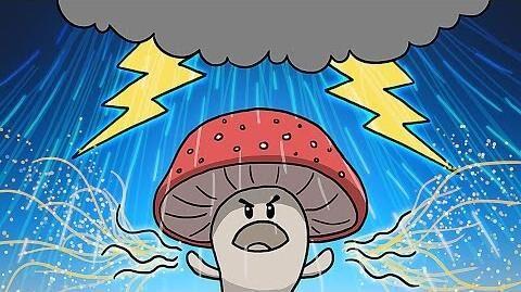 How_Mushrooms_Make_It_Rain