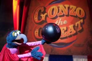 The Great Gonzo.jpg