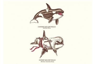 Whaleku-xlarge.png