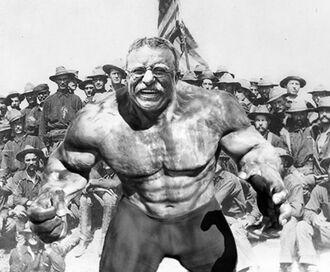 T4Teddy-Roosevelt-Hulk.jpg