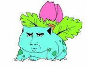 Small pokemons-with-nic-cages-face1.jpg
