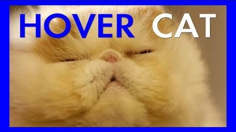 Hover_Cat_(Ep._01)