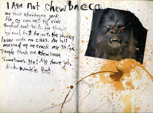 I am not Chewbacca.jpg