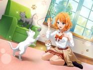 Cat Research!