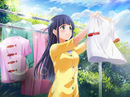 A Sunny Day for Laundry