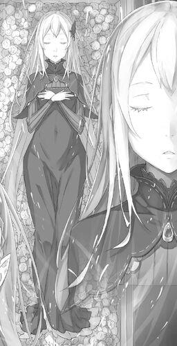 Light Novel (Actual)