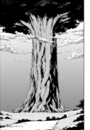 Flugel Tree Manga