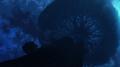 Flugel Tree