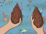 Mega Seeds