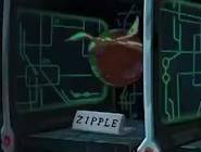 Zipple
