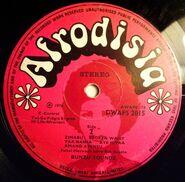 Afrodisia DWAPS2015-2