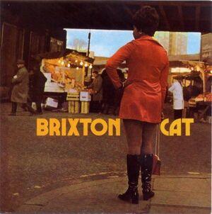 Brixton Cat 500.jpg