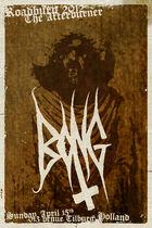 Roadburn 2012 - Bong