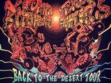 Back To The Desert