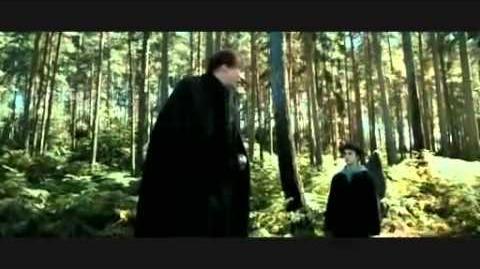 Best of RiffTrax's Harry Potter and the Prisoner of Azkaban