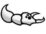 Пещерный жук