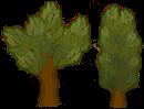 Деревья.png